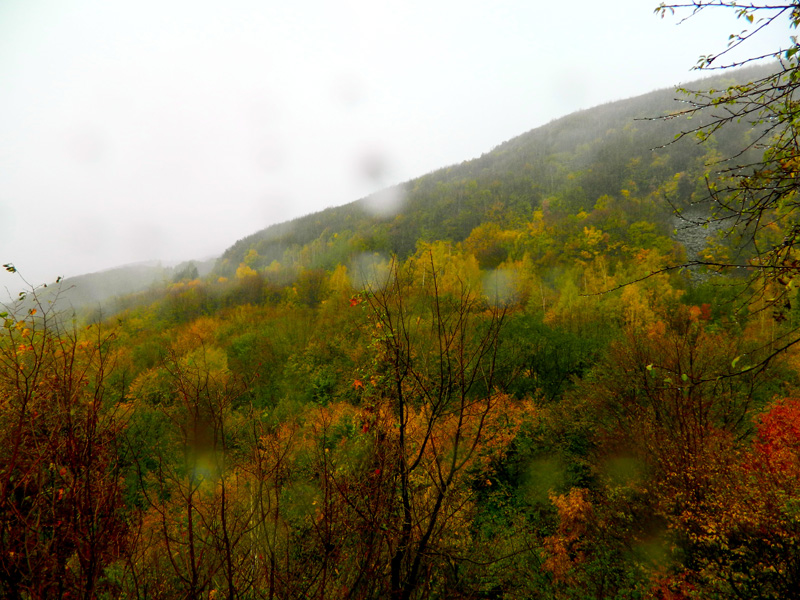 Sofia Bulgaria 3
