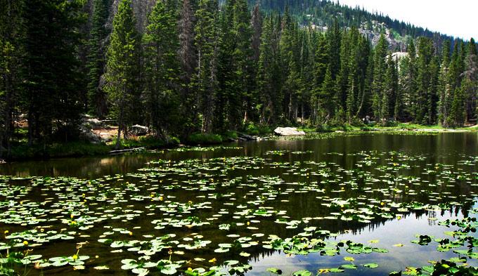 Colorado Cub Lake:The Pool Loop, Rocky Mountain National Park