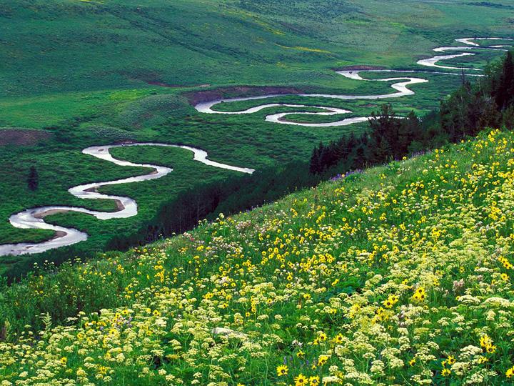 Colorado Gunnison National Forest