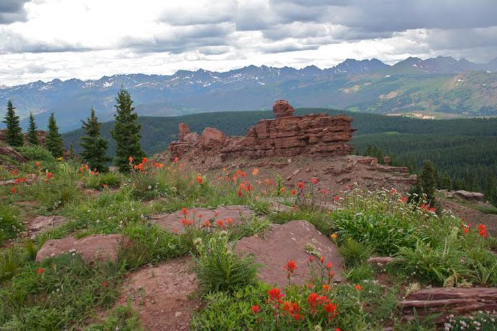 Colorado Shrine Mountain Trail