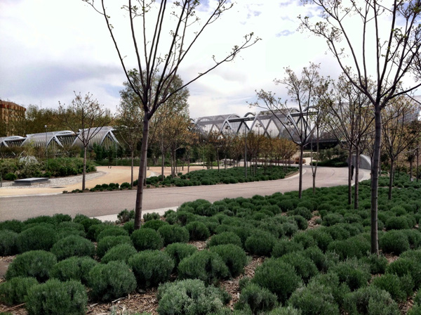Madrid Rio Parque 2