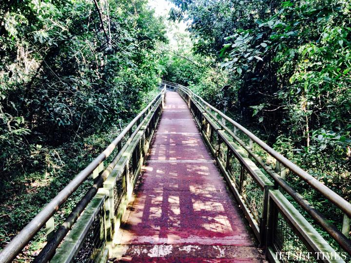 Buenos Aires Iguazu Falls nature