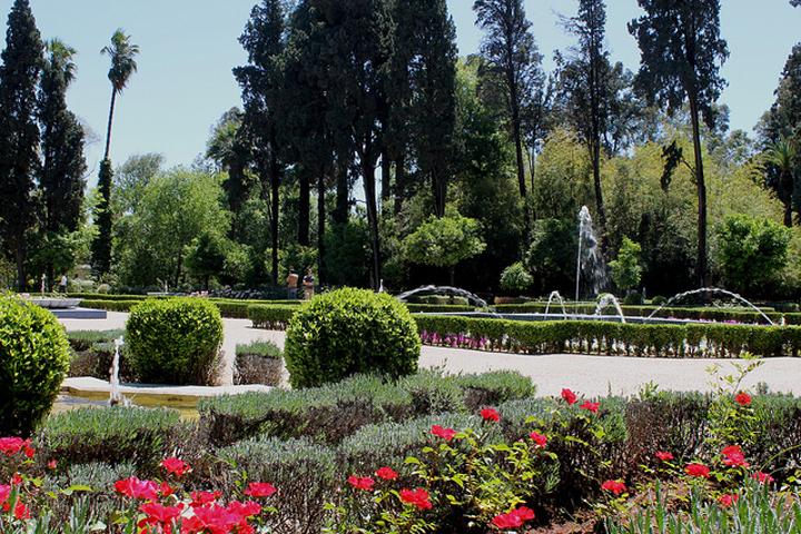 Flickr Lorenz C. Töpperwien Jardin Jnan Sbil Fez Morocco