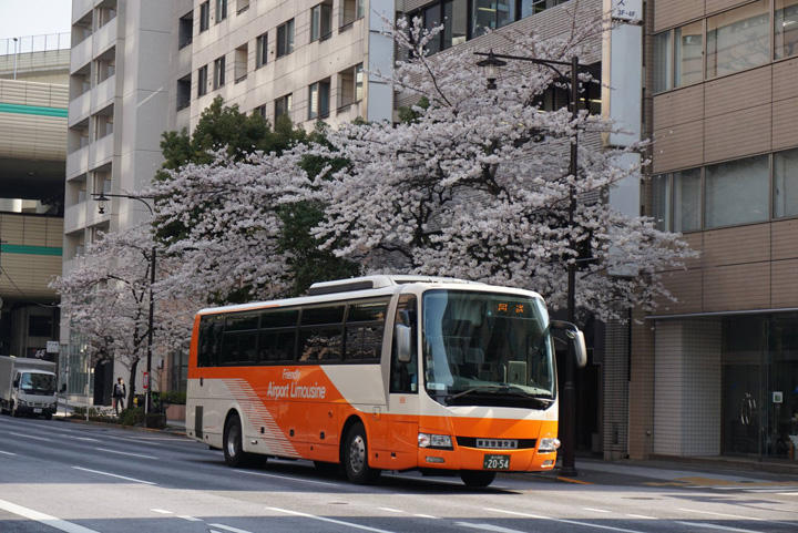 Facebook Airport Limousine Bus