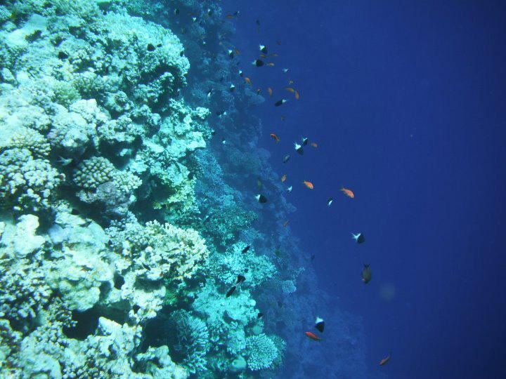 3 Blue Hole Egypt