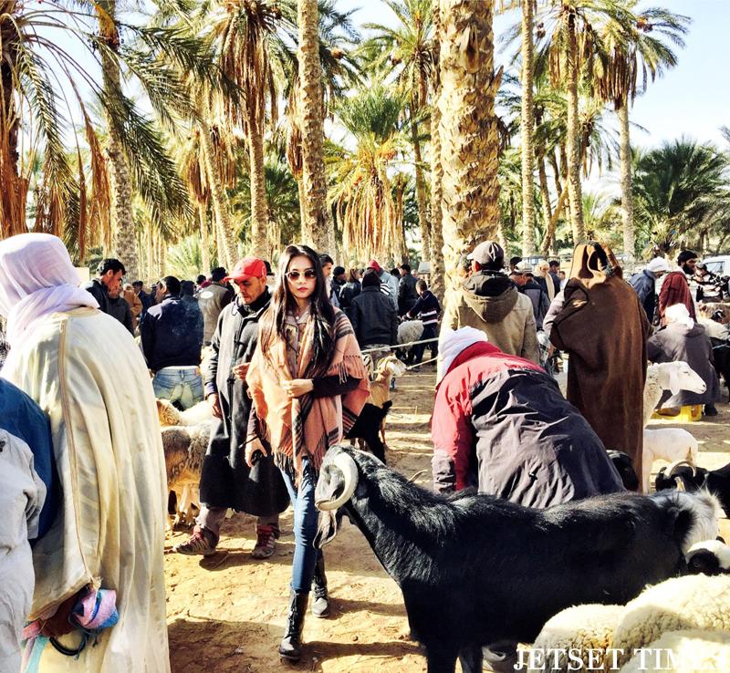 Tunisia animal market Douz