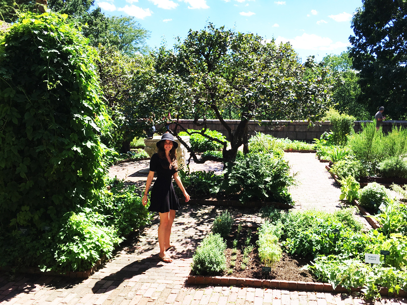 Cloisters Museum NYC garden