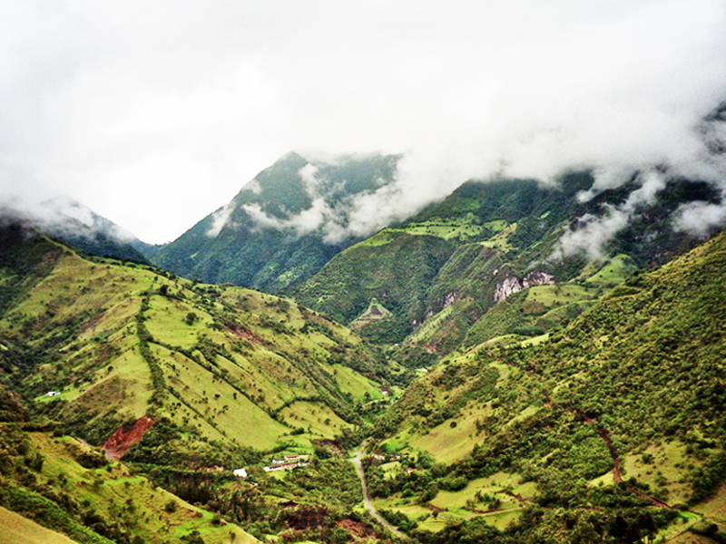 4-cloud-forests