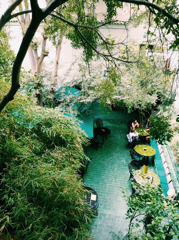 le jardin marrakech - Jardin Marrakech