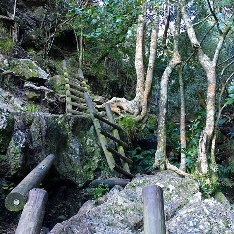 Skeleton Gorge