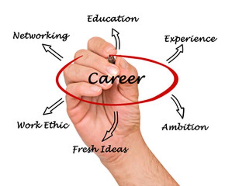 Career chart raduate advice