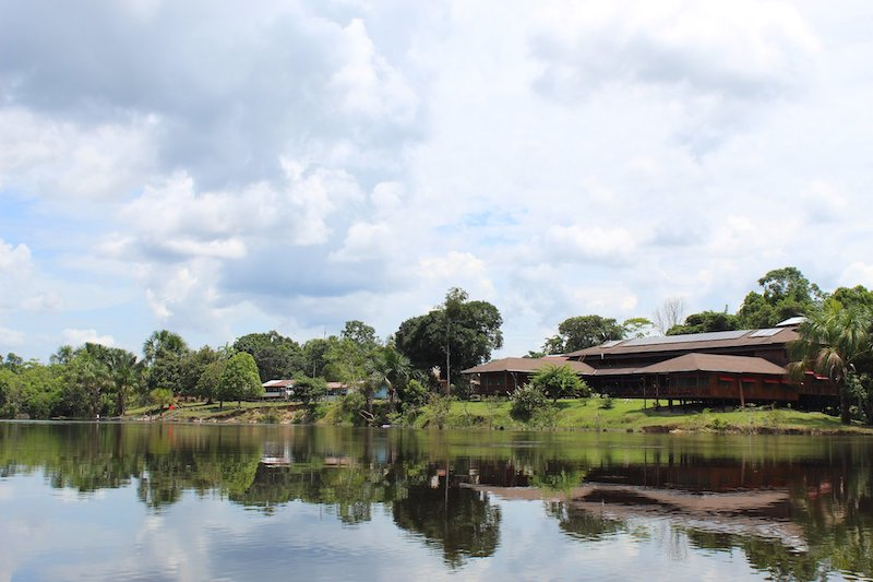 Ayahuasca Foundation Retreats
